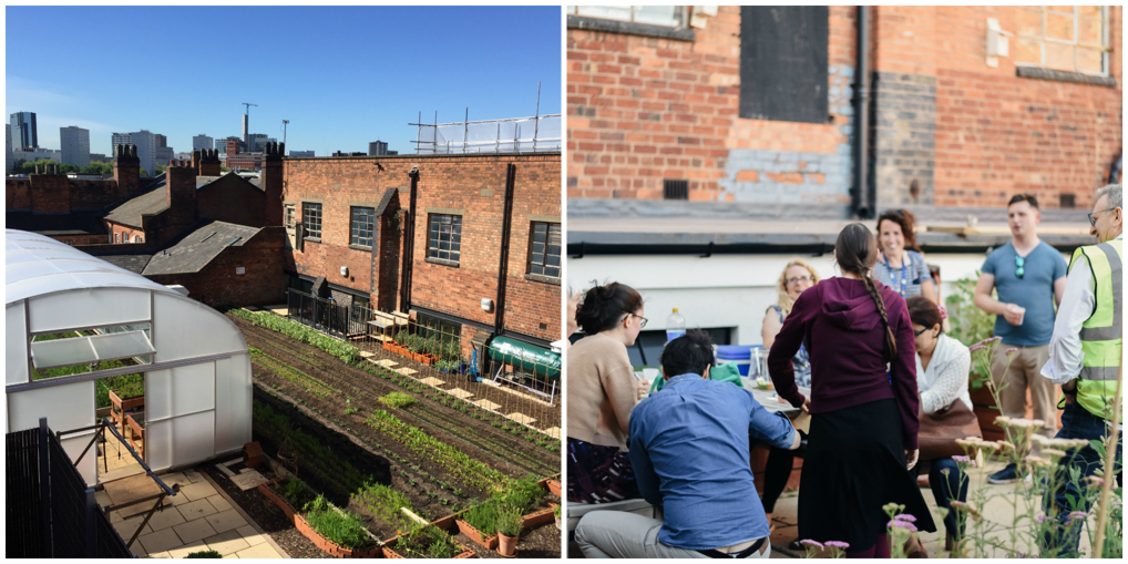 image of two views on the rooftop garden